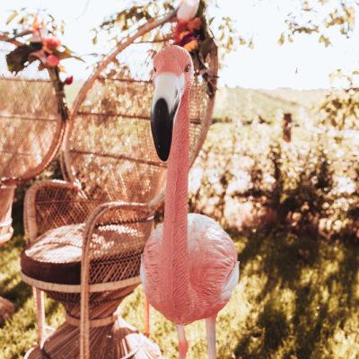 huwelijk trouwfotografie madame cocotte tropical-70_websize